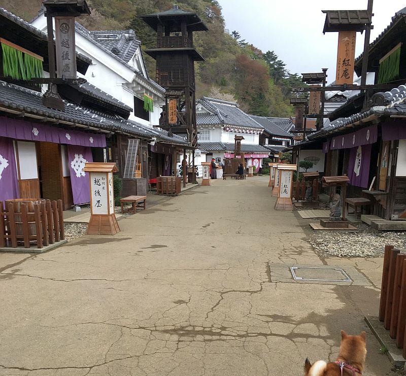 日光江戸村は予想を完全に裏切る面白さ!(春のわんにゃん祭)