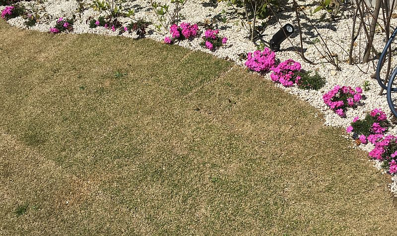 庭をホワイト&ピンクにする計画(砂利と花です)
