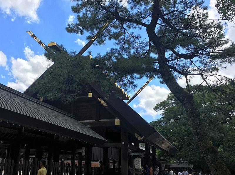思い出の熱田神宮!幻のCD「森は生きている」を手に入れろ!?