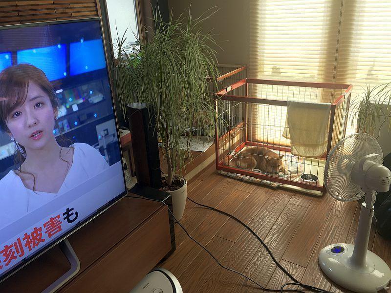 停電時に消費電力に注意しつつ家電を使う方法(自己責任で)