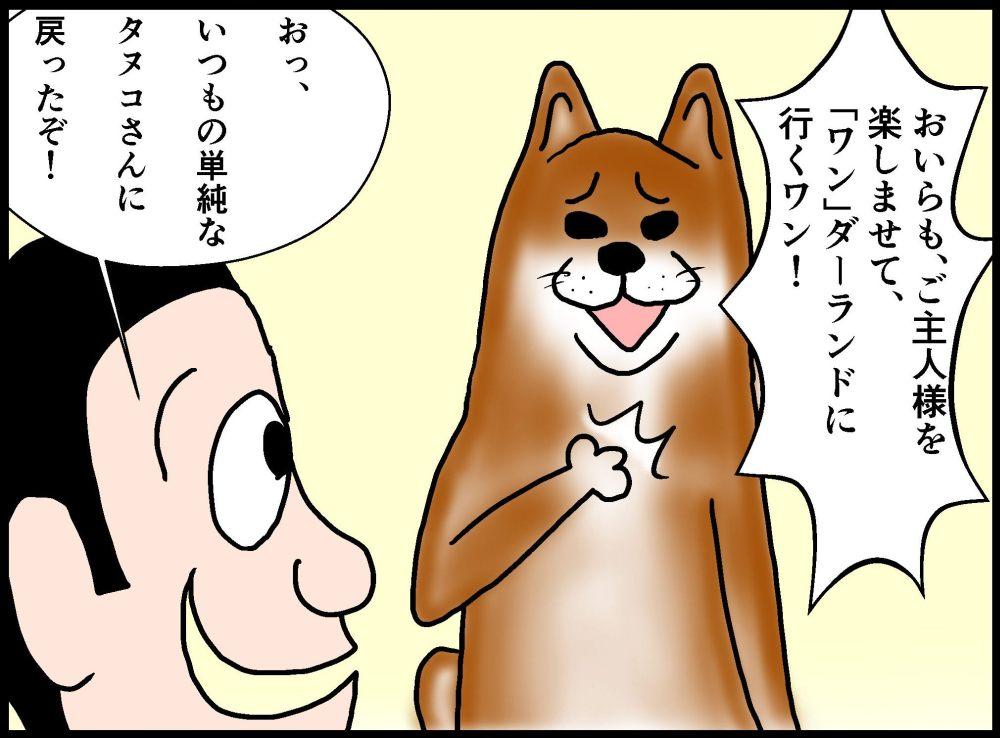 タヌコはご褒美に釣られない犬である