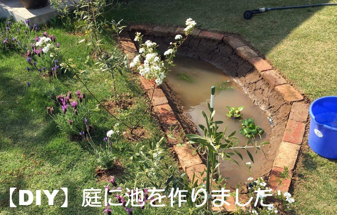 庭にメダカ池をDIYで作った話