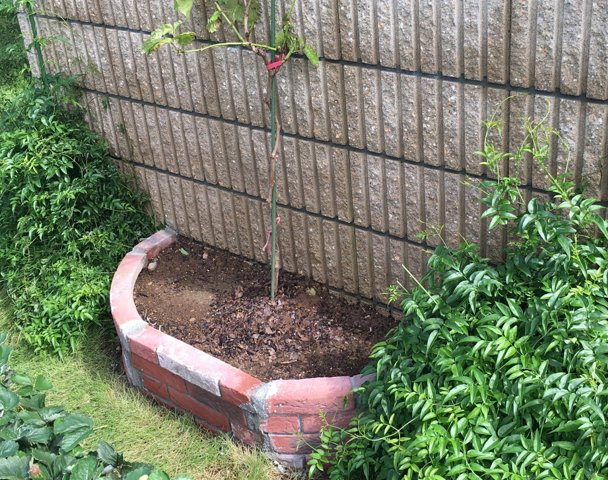 花壇ブロックで手抜き花壇を作ってみた